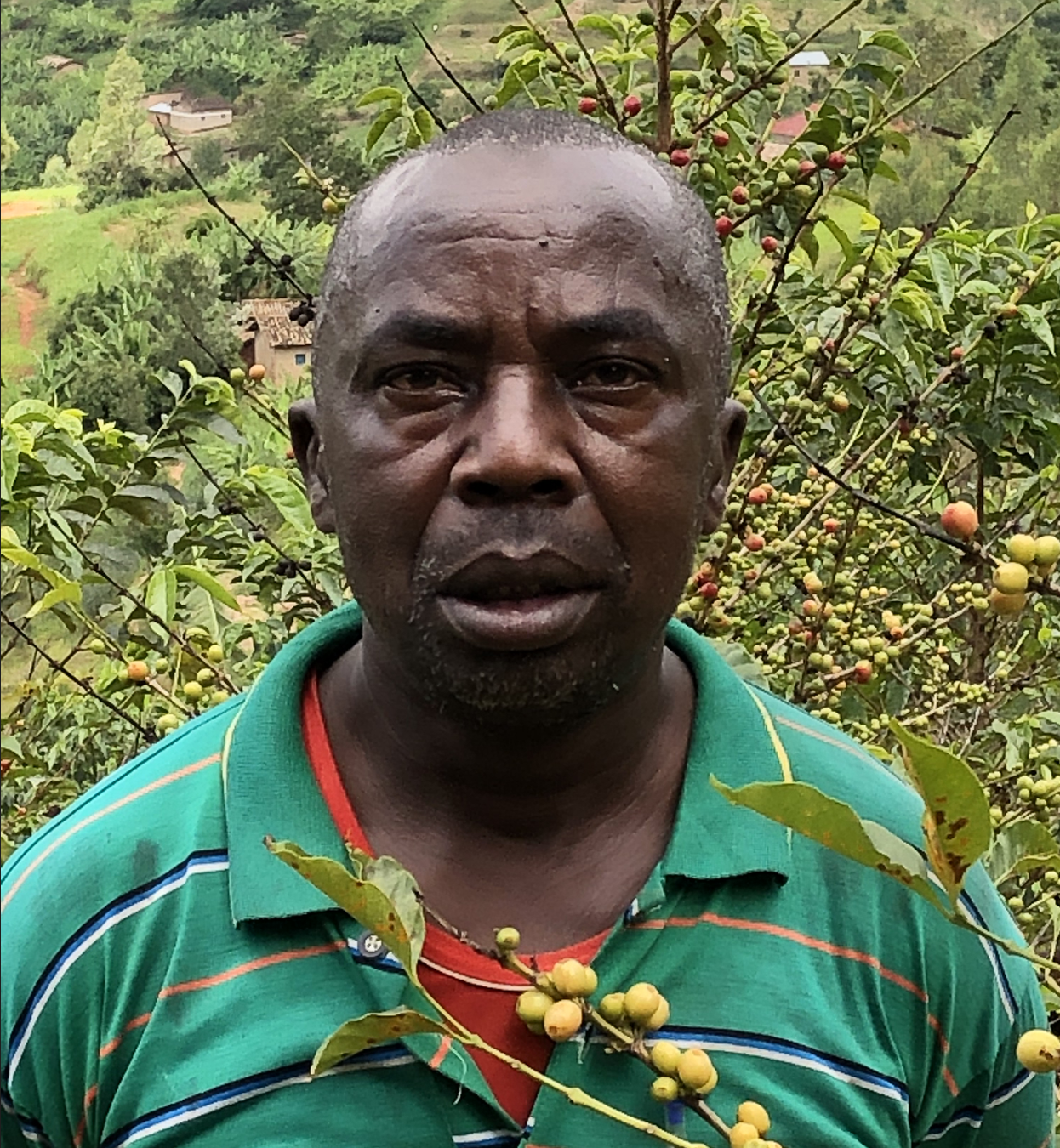 Vénuste Ndimukaga | coffee plantation | € 1000